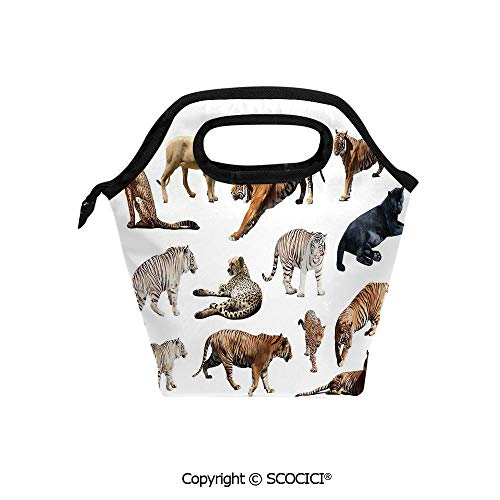 (Reusable Insulated Lunch Bags with Pocket Collection of Tigersand other Big Wild Cats Predatory Feline Zoo Lying Standing Background for Adults Kids Boys Girls.)