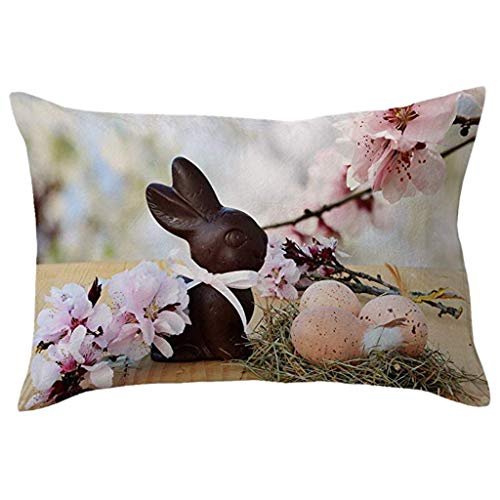 Cover,Hypoallergenic Alternative Polyester Square Form Decorative PillowCover, Easy to WASH and Removable ()