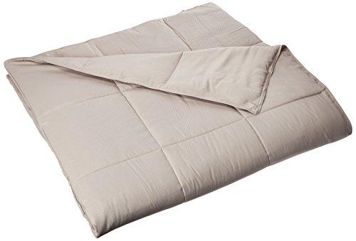 down alternative comforter taupe - 1