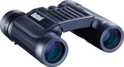 Bushnell H2O Waterproof Compact Roof Prism Binocular, 10 x 25-mm