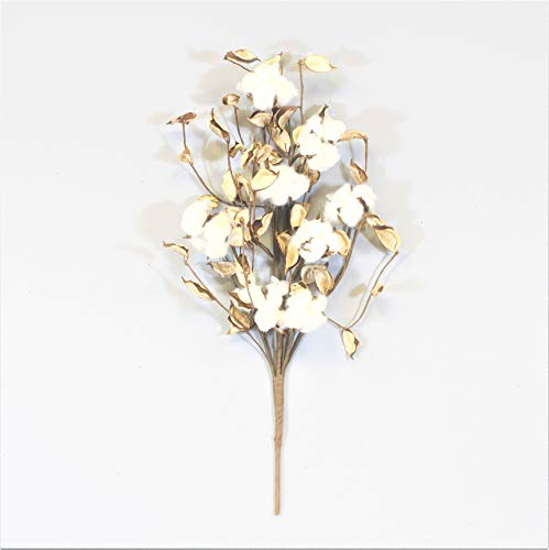 Silvercloud Trading Co. [New] 1 Cotton & Husk Stem - Sold Individually - 8 Cotton Buds/Stem - 18'' Tall - Farmhouse Style Floral Display Filler - Rustic Wedding Centerpiece by Silvercloud Trading Co.