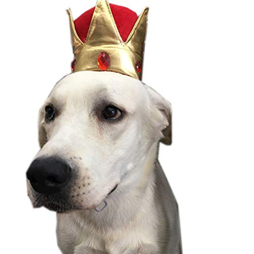 (AOFITEE Adorable Dog Crown-Shaped Birthday Hats Reusable Pet Gold Tiara, Funny Birthday Party Decorations for Puppy Cat Pig)