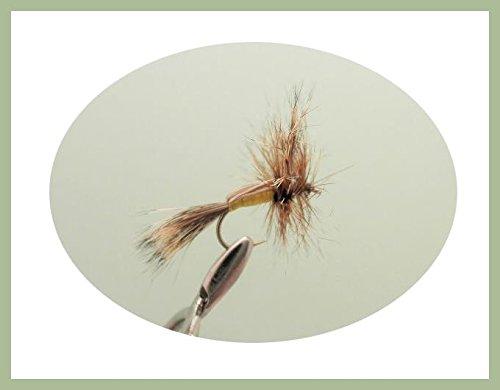 16/K fr/ühen Saison Forellenangeln Fliegen/ /Gr/ö/ße 10/verschiedene Farbe Fl/üsse