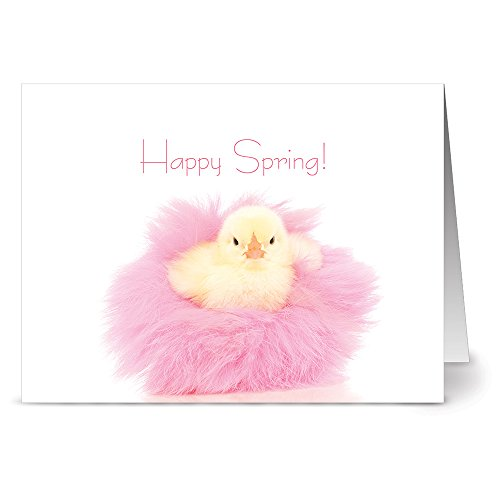 24 Easter Note Cards - Spring Chick - Blank Cards - Hot Pink Envelopes Included