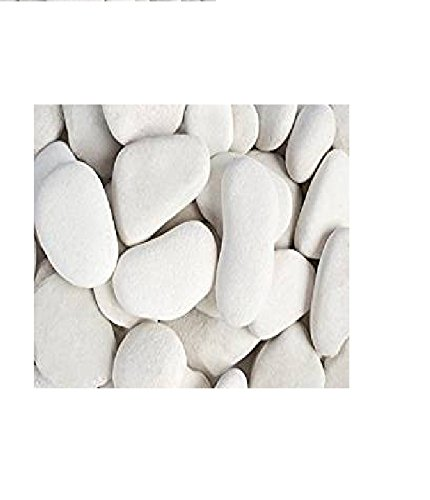 Margo 20 Lb White Large Flat Egg Rock Caribbean Beach Pebbles 3 in. to 5 in. by Margo