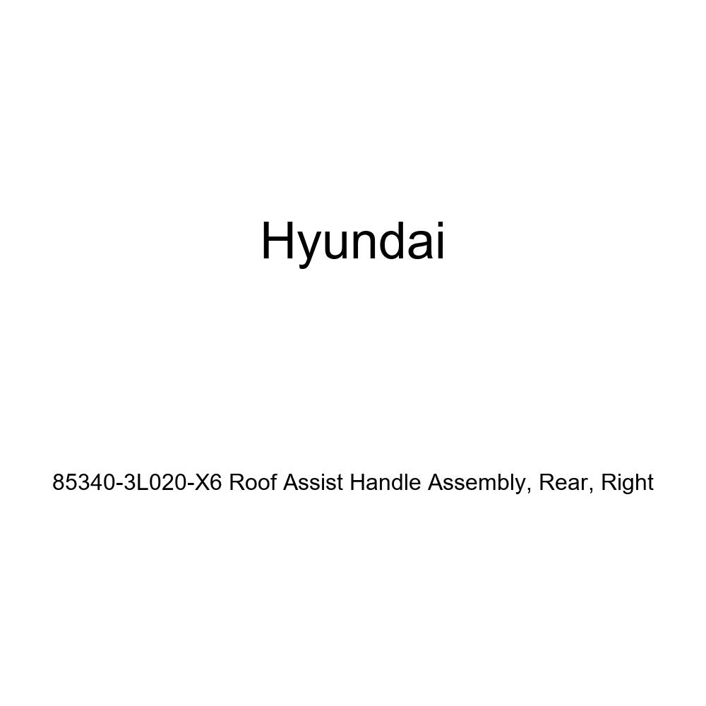 Right Rear Genuine Hyundai 85340-3L020-X6 Roof Assist Handle Assembly