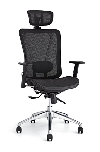 Cedric Ergonomic Mesh Office Chair,Metal Bracket High Back Desk Chair with Adjustable Lumbar Support, PU Armrests and Mesh Headrest and seat(CD-874MH)