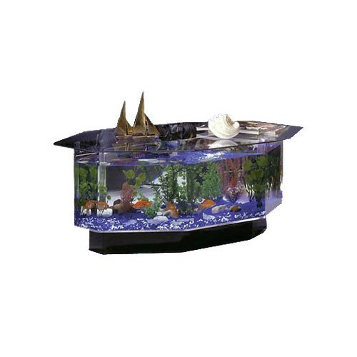 Aquarium Coffee Table w Six Sides