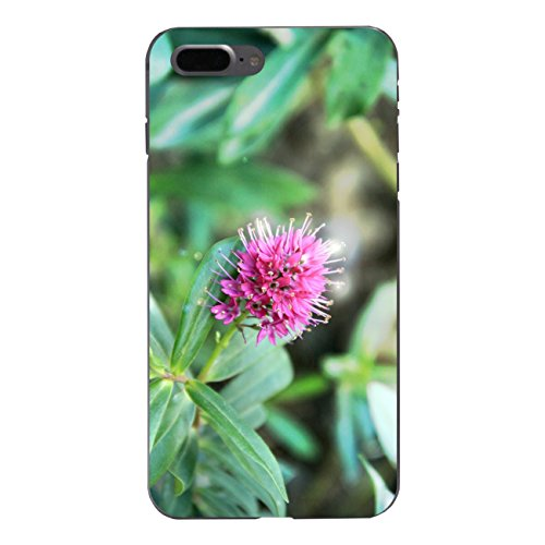 """Disagu Design Case Coque pour Apple iPhone 7 Plus Housse etui coque pochette """"Spanische Frühlingsblüte"""""""
