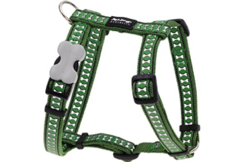 Red Dingo Reflective Dog Harness, Small, Green