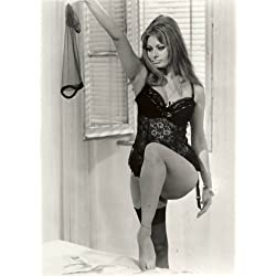 Sophia Loren Striptease Poster Photo Pinup Art Girl Model Pinups Posters 11x14