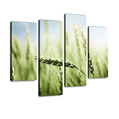 (Green Wheat Field and Sunny Day Canvas Wall Art Hanging Paintings Modern Artwork Abstract Picture Prints Home Decoration Gift Unique Designed Framed 4 Panel)