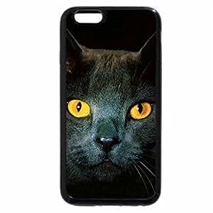 iPhone 6S Plus Case, iPhone 6 Plus Case, golden eyes