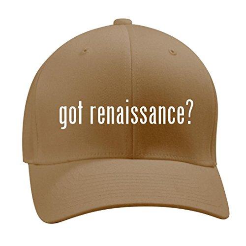 got renaissance? - A Nice Men's Adult Baseball Hat Cap, Khaki, Small/Medium