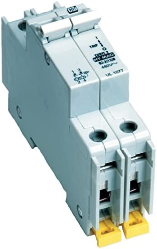 American Electrical C15A2P 15-Amp 2-Poles DIN Rail Mounted Circuit Breaker