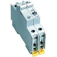 American Electrical C15A2P 15-Amp 2-Poles DIN Rail Mounted Circuit Breaker