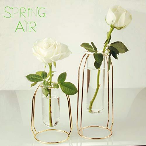 A+Selected Vases Set of 2 Glass Vases with Metal Frame, Modern Rose Gold Frame Cylinder Clear Vase Planter Terrariums, Flower Holder Decorations for Living Room, Office, Party