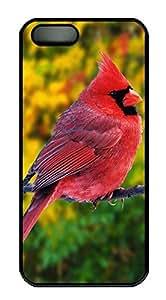 iPhone 5 5S Case Multicolored Bird PC Custom iPhone 5 5S Case Cover Black