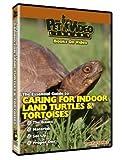 PVL LAND TURTLE & TORTOISE DVD