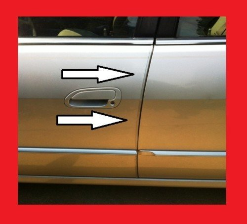 Car Clear Door Edge Trim Guard Molding All Models D.I.Y. Kit (Car Door Molding)