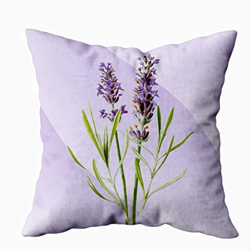 EMMTEEY Home Decor Throw Pillowcase for Sofa Cushion Cover,Lavender Purple Soft and Elegant Decorative Square Accent Zippered and Double Sided Printing Pillow Case Covers 20X20Inch