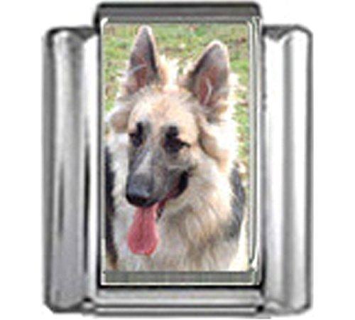 Stylysh Charms German Shepherd Dog Photo Italian 9mm Link DG206