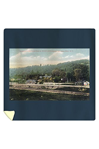 Olean, New York - WNY&P Railroad Lines; Riverhurst Park Entrance Scene (88x88 Queen Microfiber Duvet Cover) (Olean New York compare prices)