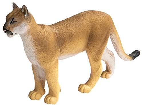 (Safari Ltd. Wildlife Wonders - Florida Panther - XL - Realistic Hand Painted Toy Figurine Model - Quality Construction from Phthalate, Lead and BPA Free Materials - for Ages 3 and Up )