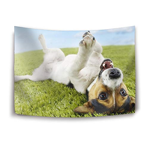 HEHESELL Tapestry Funny Jack Russell Wall Hanging Bedspread Throw Blanket Home Room Wall Decor 80x60in