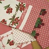 Moda Home Vintage Reproduction Cherries Polka Dots & Crochet Cherry Trim Kitchen Towels (Set of 4)