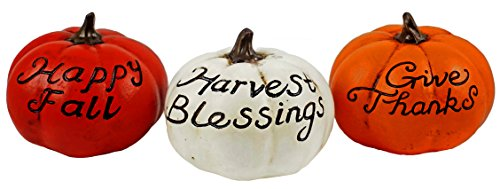 Special T Imports Give Thanks Fall Sayings Decorative Pumpkin Figurines - Set of -