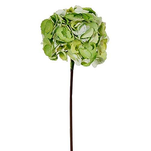 25'' Silk French Hydrangea Flower Spray -2 Tone Green (pack of 12) by SilksAreForever