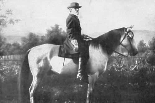 - New 5x7 Photo: Robert E. Lee & Horse, Traveller