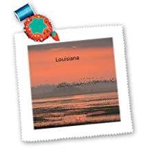 Florene - America The Beautiful - Print of Louisiana Sunset With Birds Flying - Quilt Squares - 6x6 inch quilt square - qs_194698_2