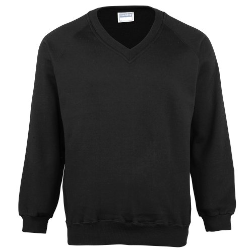 (Maddins Mens Colorsure V-Neck Sweatshirt (S))