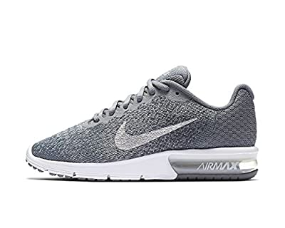 NIKE Womens Air Max Sequent 2 Running Trainers 852465 Sneakers Shoes (UK 5.5 US 8 EU 39, Cool Grey Metallic Silver 008)