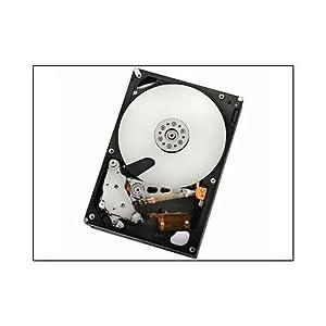 "FREE SHIPPING New 1TB 64MB Cache 7200RPM SATA2 3.5/"" Desktop Hard Drive PC//Mac"