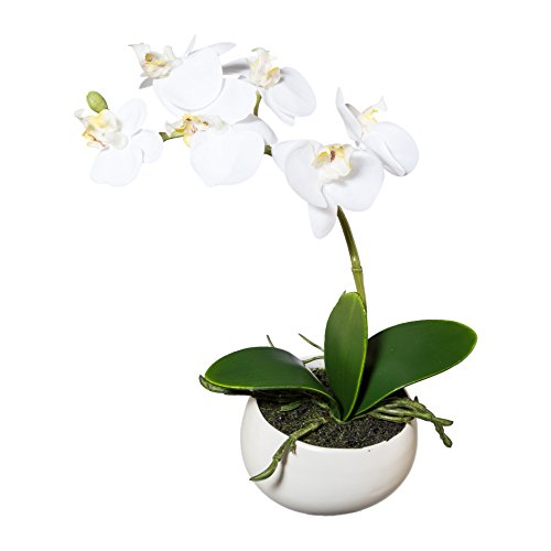 Ceramic Artificial Vases (Artificial Flower, White Orchid Phalaenopsis Including White Ceramic Vase, 9