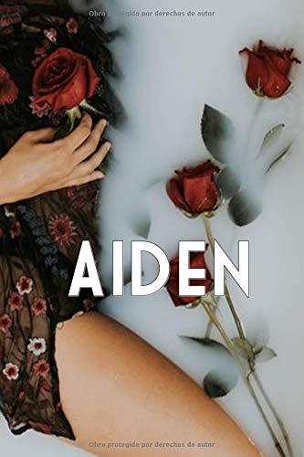AIDEN (McQueen Mens)  [Bayón, Karmen] (Tapa Blanda)
