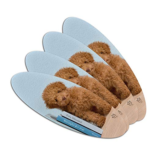 Poodle Puppy Dog Book Shelf Double-Sided Oval Nail File Emer