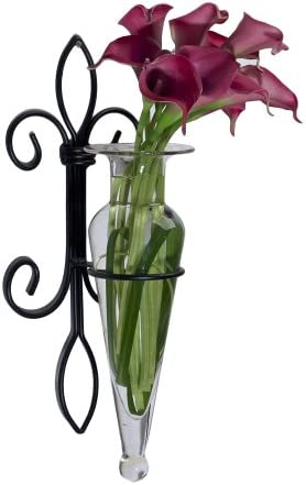 Danya B. A043-C Home Accent – Wall Mount Fleur de Lis Flower Vase Sconce – Iron and Clear Glass