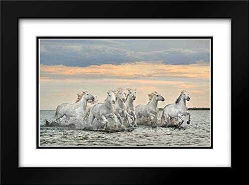 Camargue Horses - France 40x28 Black Modern Frame and Double Matted Art Print by Ortega, Xavier