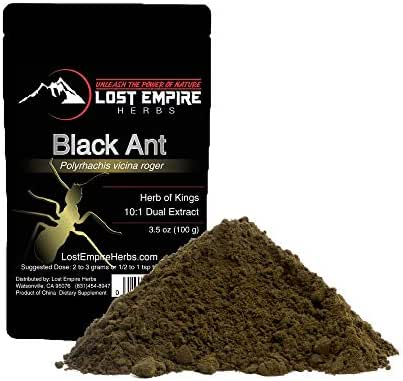 Black Ant - Herbal Extract Powder - Herb of Kings - Anti Aging Tonic - Natural Energy Boost Kidney, Liver, and Immune Support - Vitamins & Minerals - Gluten Free, Paleo, Keto Friendly (100 g)