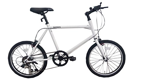 RAYSUSレイサス 自転車 20インチ RY-206KTN-H ミニベロ(小径車) シマノ6段ギア 95%完成車  マットホワイト B01K4I3L6M