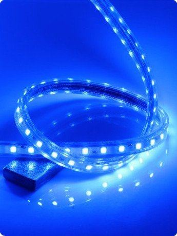 CBConcept 90FT Blue 120 Volt High Output LED SMD5050 Flexible Flat LED Strip Rope Light - [Christmas Lighting, Indoor / Outdoor rope lighting, Ceiling Light, kitchen Lighting] [Dimmable] [Ready to use] [7/16 Inch Width X 5/16 Inch Thickness]