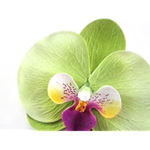 """(10) Green Phalaenopsis Orchid Silk Flower Heads - 3.75"""" - Artificial Flowers Heads Fabric Floral Supplies Wholesale Lot for Wedding Flowers Accessories Make Bridal Hair Clips Headbands Dress 3"""