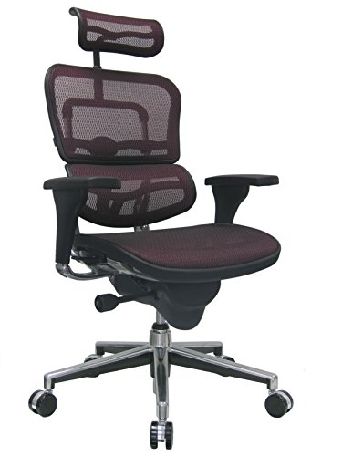 Eurotech Seating Ergohuman ME7ERG-RED(N) High Back Mesh Managers Chair, Plum Red ()