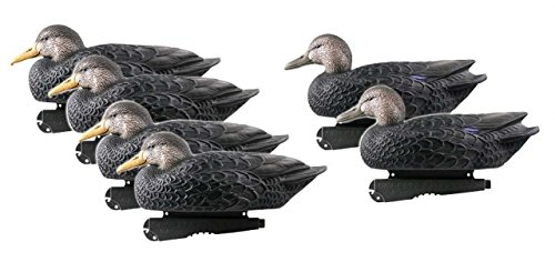 Greenhead Gear Over-Size Duck Decoy,Black Ducks,1/2 Dozen