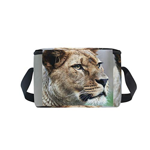 Lioness in Strap Lunchbox Lunch Nature Bag Leo Majestic Cooler Panthera Picnic Shoulder for Oq7PX7EnFw