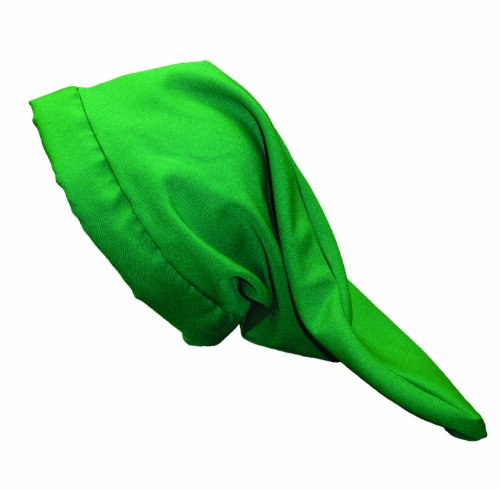 Alexanders Costumes Dwarf Hat, Green, One Size (7 Dwarfs Costume)
